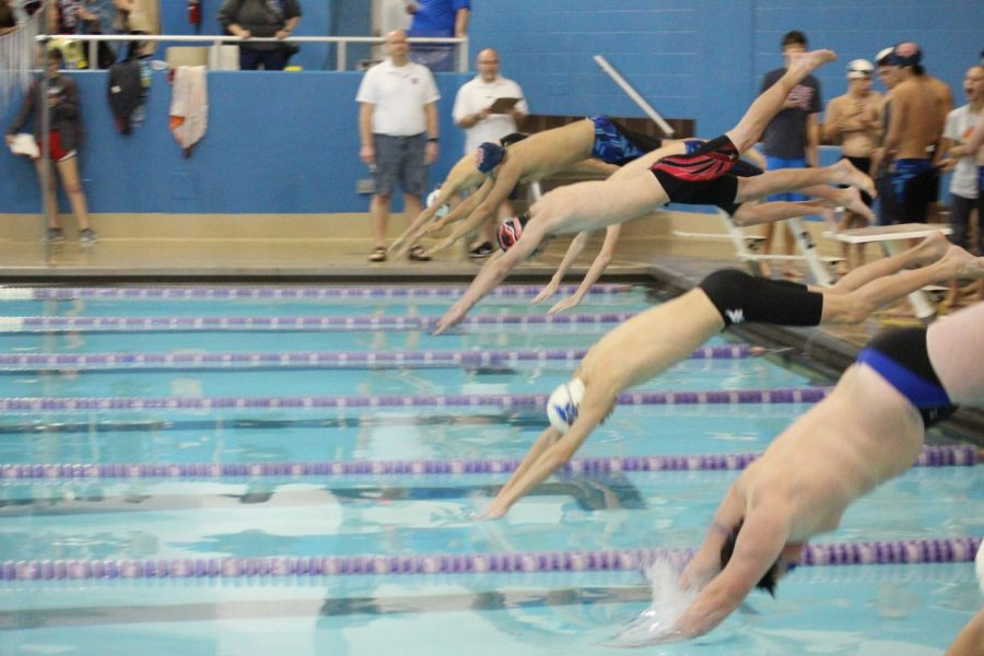 JCHS swimmer Alex Seely dives into the pool at a meet on January 10.