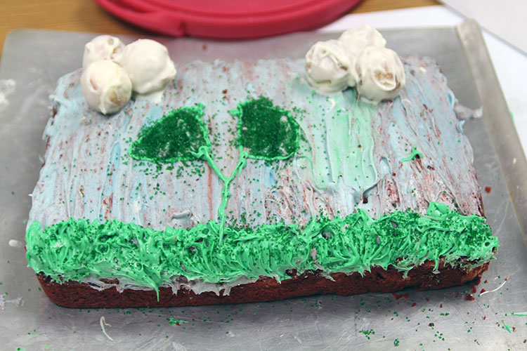 Annalee Pellicotte, Destiny Honore, and Aaron Reutzel s cake made to demonstrate the effects of the Clean Air Act