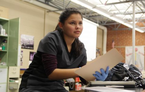 Health Science Students Begin Semester Long Project